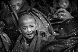 PhotoVivo Honor Mention - Shiliang Liu (China)  In The Snow