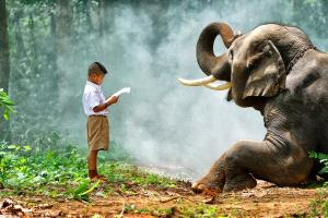 IUP Honor Mention - Twee-Liang Wong (Singapore) <br /> Child Read To Elephant