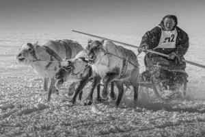 SPC Merit Award - Sergey Anisimov (Russian Federation)  Competitions Reindeer Herders 10