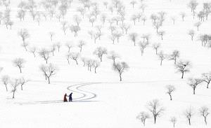 PhotoVivo Silver Medal - Kaixuan Liu (China) <br /> Love In Snowland