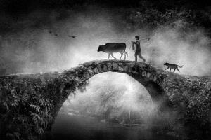 PhotoVivo Honor Mention - Ruiyuan Chen (China)  The Ancient Bridge