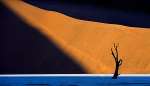 IUP Honor Mention - Yigan Liang (China)  Lonely Desert
