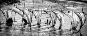 PhotoVivo Gold Medal - Jijun Sun (China)  Homesickness