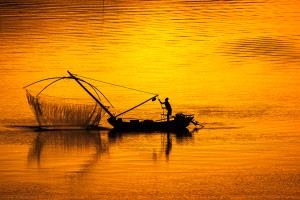 PhotoVivo Gold Medal - Weining Lin (China) <br /> Fishing Back