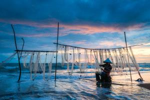 PhotoVivo Gold Medal - Suyue Wang (China) <br /> Weaving Over Seaside