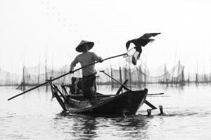 SPC Merit Award e-certificate - Xiaoxi Yu (China)  Fishing