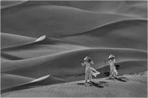 PhotoVivo Honor Mention e-certificate - Lee Eng Tan (Singapore)  Sand Dunes Bw