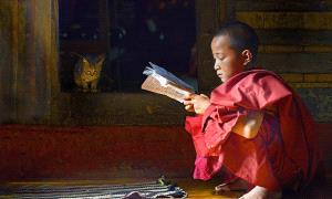 SPC Merit Award e-certificate - Joon Yow Chong (Singapore) <br /> 3. A Hardworking Monk