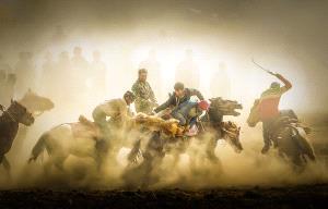 PhotoVivo Gold Medal - Jianhui Liao (China)  Rob Sheep